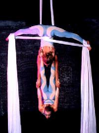 circus performers stilt walkers acrobats contortionists jugglers hand balancing clowns cirque acts aerial artist trapeze acts
